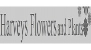 Florist in Sheffield, South Yorkshire