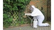 Pest Control Services in Colchester, Essex